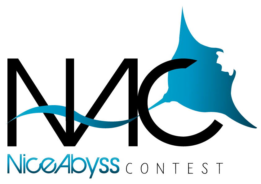 Nice Abyss Contest